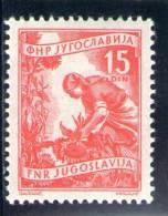 YOUGOSLAVIE 1952-5 ** OFFSET - Jugoslawien