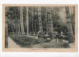 51-1230 HEUTREGIVILLE Cimetière - France