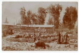 AMERICA CHILE MISSIONS - ACADEMY REGINA APOSTOLORUM OLD POSTCARD - Chile