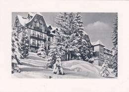 Freudenstadt, Kurhaus Palmenwald, Weihnachts- Und Neujahrsgruß 1955 - Mitteilung