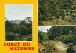 CONGO - Foret Du Mayombe - Congo - Brazzaville