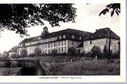 CHATEAU-SALINS - Chateau Salins