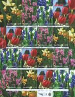 San Marino 2010 Fiori Flowers Blumen Minifoglio Con 4 Serie  Nuovo Illinguellato ** MNH - Unused Stamps