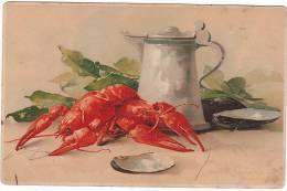 02689 KLEIN Crayfish - Klein, Catharina