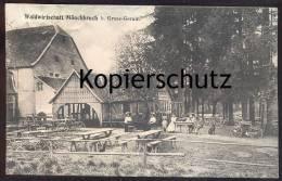 ALTE POSTKARTE WALDWIRTSCHAFT MÖNCHBRUCH BEI GROSS-GERAU Fahrrad Bike Hund Dog Chien Moenchbruch Groß-Gerau Postcard Cpa - Gross-Gerau