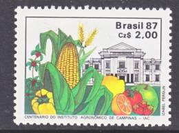 Brazil  2106    **  FARMING  CORN - Brazil