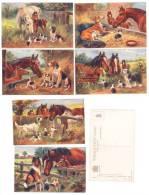 B184 CAVALLI CANI CHUMS OILETTE ENGLAND SERIE COMPLETA 6 CARDS  NON VIAGGIATE - Pferde