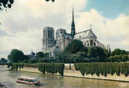 75 - Paris - La Seine Et Notre-Dame, Edit. CHANTAL - Notre Dame De Paris