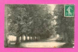 CPA  BELGIQUE  -  CAMBRON-CASTEAU  -  Avenue Des Tilleuls  ( En 1912 ) - Brugelette