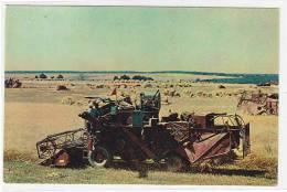 03096 Harvesting Corn Combine-harvester  Tatar Republic USSR PC - Landbouw