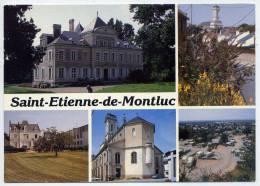 Saint ETIENNE De MONTLUC--Vues Diverses,cpm éd Combier - Saint Etienne De Montluc