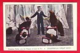 Cirque-31P126 Dompteur Walter Avec Ses Phoques Et Lion De Mer, Souvenir Du Cirque Rancy, Cpa Colorisée BE - Circus