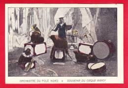 Cirque-34P126  Souvenir Du Cirque Rancy, Orchestre Du Pole Nord, Les Otaries Avec Des Instruments De Musique, Cpa BE - Circus