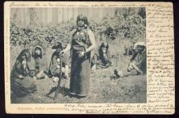Cpa    Chile   MAPUCHES    Indias Araucanas 1900 - Chili