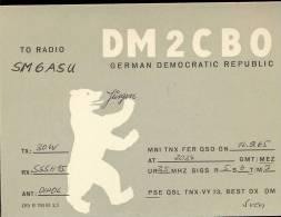QSL -  Kaart - Amateur Radio GDR - Jurgen Lohn Berlin 1965 - Cartes QSL