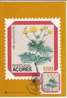 1035. Portugal, 1981, Flowers, CM - 1910-... République