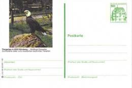 Entier Postal Allemagne, 1982 - Bald Eagle / Pygargue à Queue Blanche - Stationery Postcard - Eagles & Birds Of Prey