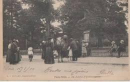 PARIS VECU ( Au Jardin D' Acclimatation Promenade A Dos De Chameau ) - France