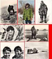7 CPSM Esquimaux - Baie James, Traineau, Pêche Au Narval, Baie D'Hudson, .. (ET) - TAAF : Terres Australes Antarctiques Françaises