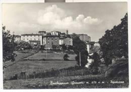 2953-BOCCHEGGIANO-MONTIERI(GROSSETO)-FG - Grosseto
