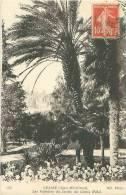 06 - GRASSE - Les Palmiers Du Jardin Du Grand Hôtel (ND. Phot. 265) - Grasse