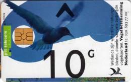 Pays-Bas : PTT Telecom : 10 G - Publiques