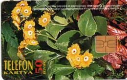 Hongrie : Telefon Kartya 50 Egység : Fleurs Flowers Oktober 1995 - Fleurs