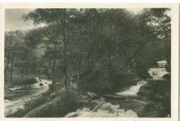 UK, Watersmeet, Lynmouth, Photo Snap-Shot [12713] - Other