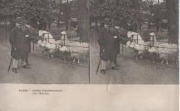PARIS ( Jardin D'acclimatation.- Les.chevres ) - Stereoscope Cards