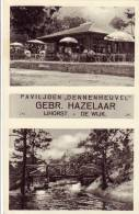 De Wijk Paviljoen Dennenheuvel IJhorst - Nederland