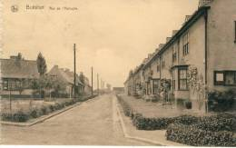 Boitsfort - Rue De L'Autruche - 193? ( Voir Verso ) - Watermael-Boitsfort - Watermaal-Bosvoorde