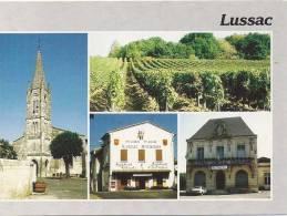 LUSSAC   MULTIVUES      BEL ETAT - France