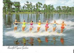 Water-skiing At Beautiful Cypress Gardens - Ski Nautique