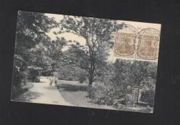 AK  Wurzen Partie Im Stadtpark 1912 - Wurzen