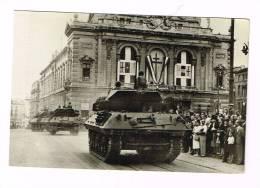 MONTPELLIER  ( Hérault )  Libération De Montpellier Les Chars Défilent  ( Guerre 39-45 - Montpellier