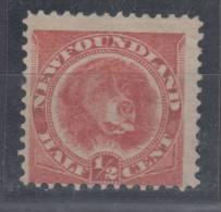 Newfoundland Fauna-dog Mi#35b 1887 Without Gum - Canada