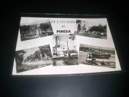 26895 Recuerdo De Pineda - Non Classés