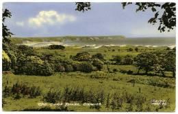OXWICH : THE SAND DUNES - Glamorgan