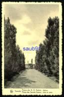 Tremelo - Pères Des Sacrés Coeurs : Allée Du Jardin - Paters Der H.H. Harten: Hoflaan  - Réf 27750 - Tremelo