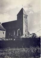 Bertem Kerk St.-Pieters - Bertem
