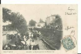 17 - CHARENTE MARITIME - SAUJON - La Seudre Pendant Les Manoeuvre, Les Chevaux S'abreuvent - Saujon