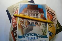 étiquette Ancienne Illustrée Hotel Gasthof Lings Feldkirch Voralberg Autriche 10.5 X 15 Cm - Fatture & Documenti Commerciali