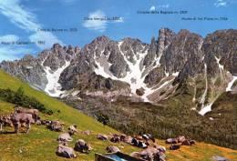 """Bellissima   Cartolina          """" GRUPPO DEI CAMPELLI  - Prealpi Orobie - Alta Valle Di Scalve -Lombardia"""" - Bergamo"""