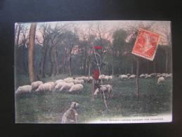 CP Carte Postale Berger Landais Gardant Son Troupeau Animée (2) - France