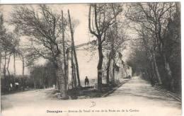 81 TARN DOURGNE Avenue De Soual Et Rue De La Poste Ou De La Cassine  3 - Dourgne