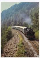 TRAIN - AK141165 Güterzug-Dampflokomotive 86 1333 ... Auf Der Muldentalbahn Unweit Amerika Vor P 19732 ... - Trains