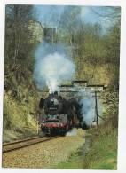TRAIN - AK141173 Güterzug-Dampflokomotive 50 3697 Bei Verlassen Des Rochsburger Tunnels - Trains