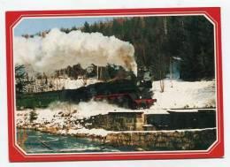 TRAIN - AK141194 Dampflokomotive 50 3696-7 ... Winterliche Erzgebirge Bei Breienbrunn - Treni