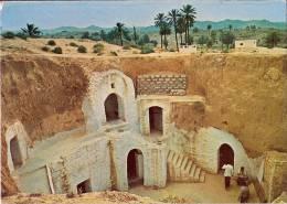 CPM POST CARD N°C228 - MATMATA TUNISIE - Habitation Traditionelle - Tunisie
