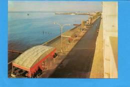 CHYPRE - Vue Matinale De La Promenade De Limassol - Cyprus - Chypre